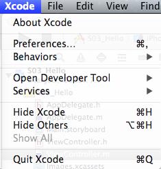 Xcodeの設定